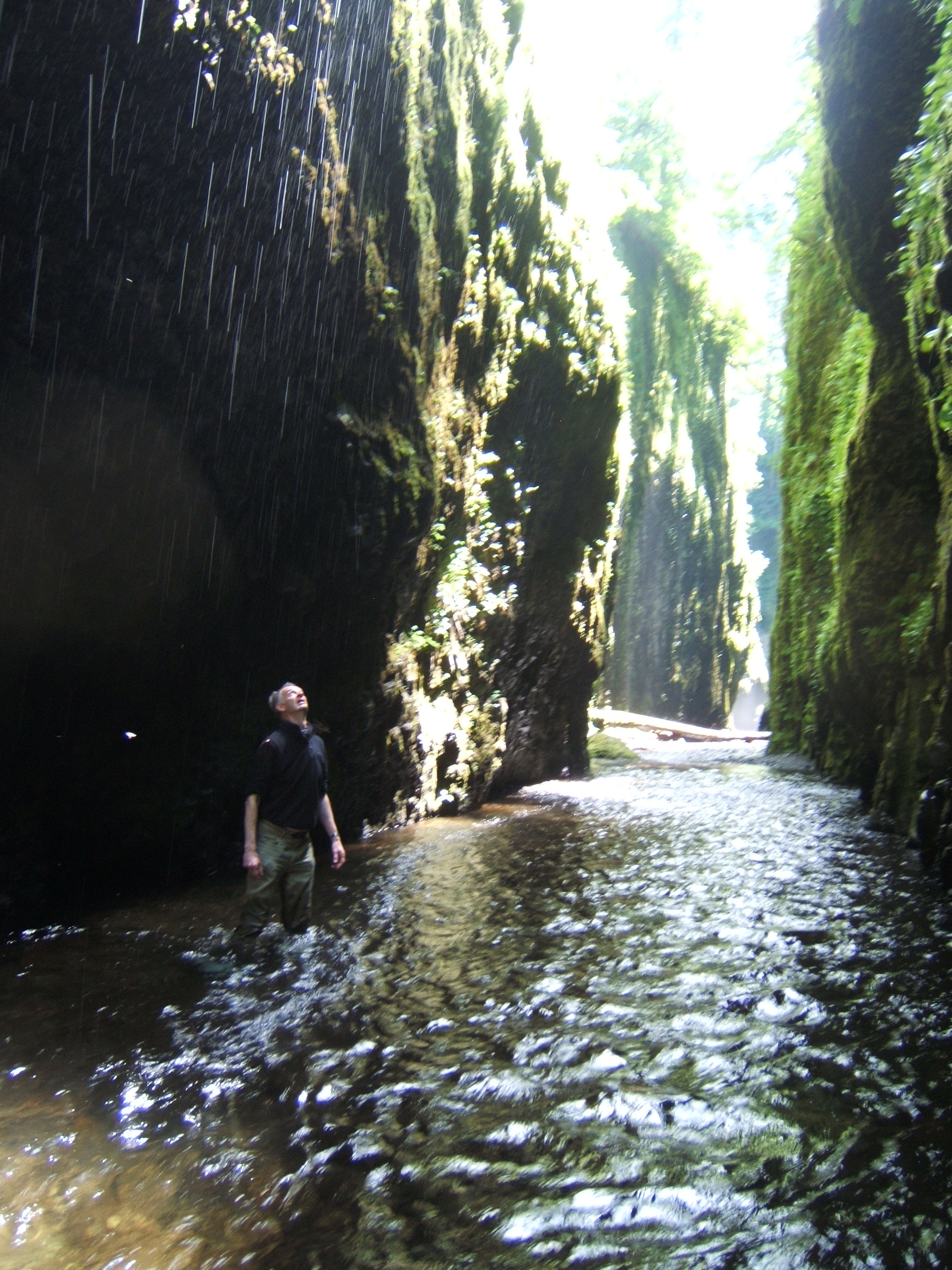 into the Oneonta Gorge