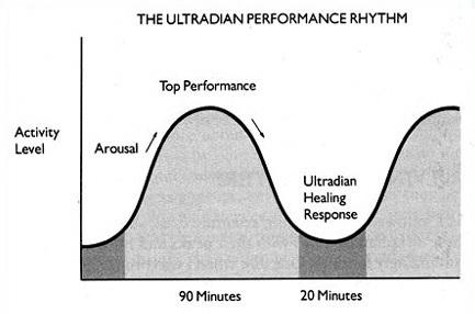 Ultradian rhythm: the BRAC (E.L.Rossi  -The 20 Minute Break