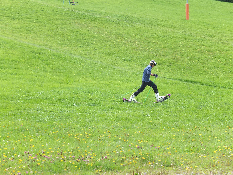 Grass skis