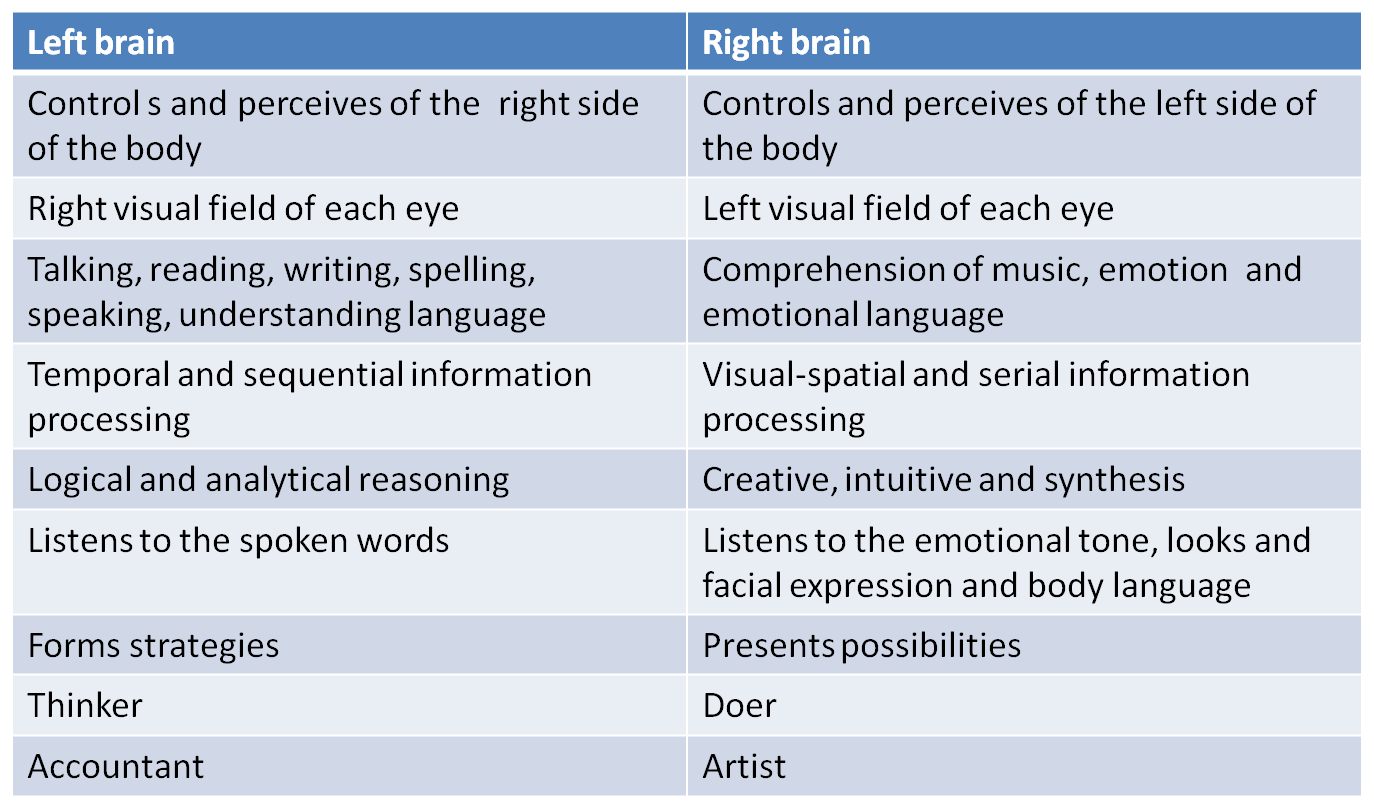 Left and right brain characteristics