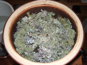Distilling Oak moss