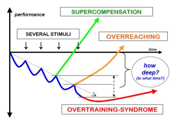 Supercompensatie 2