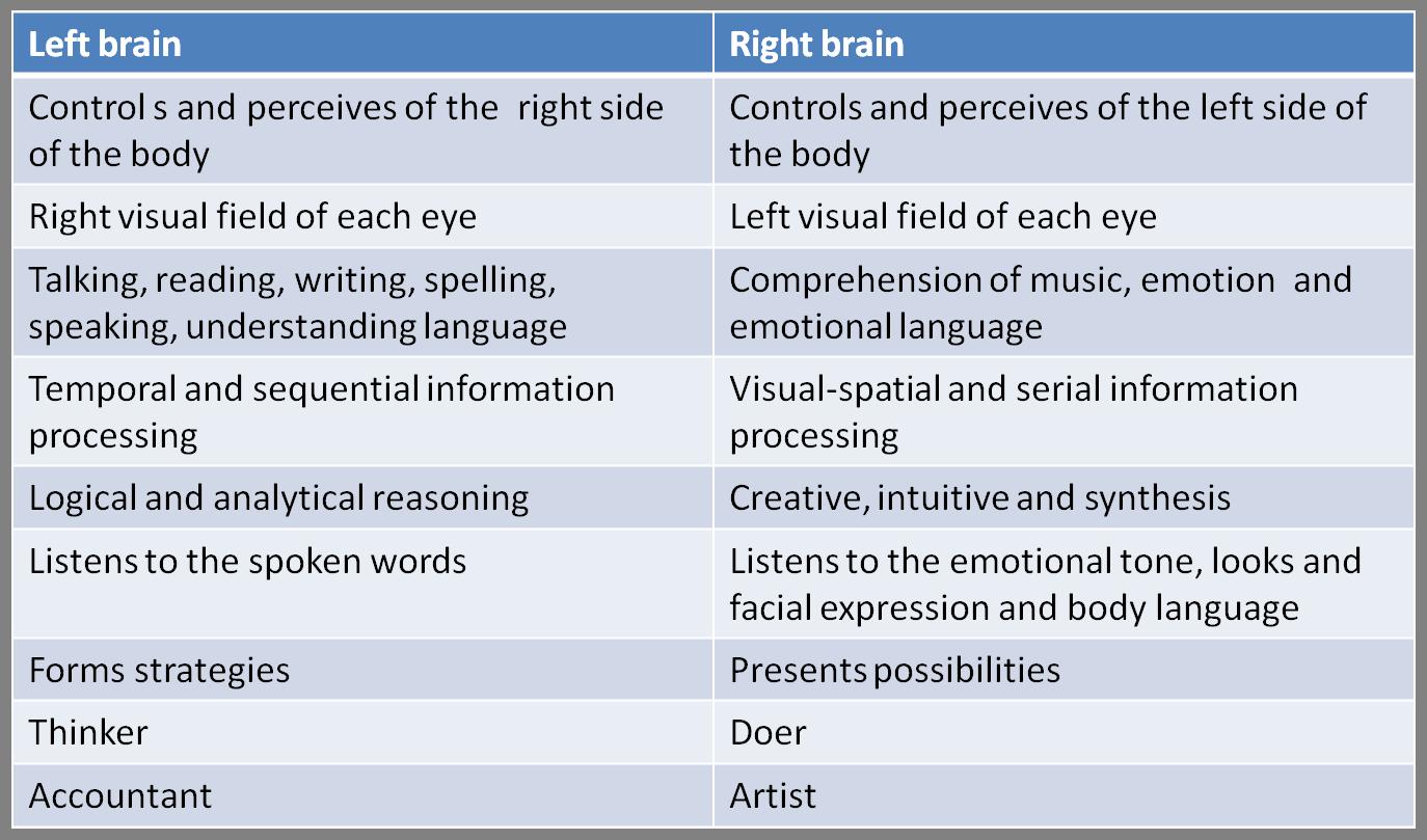 Left and right brain characteristics